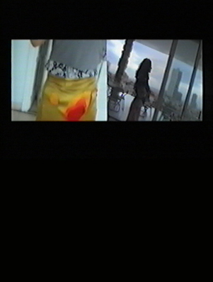 Popular skirts project (video) (2004)